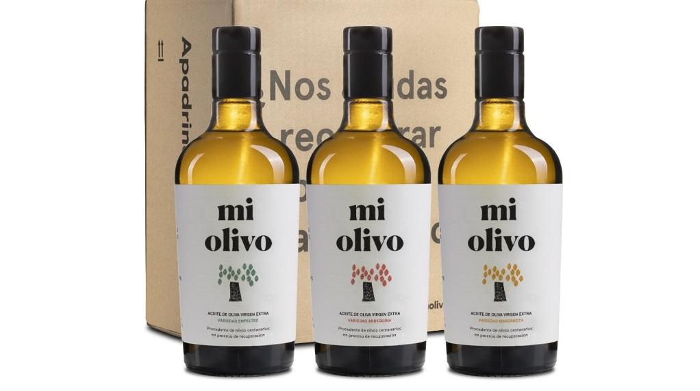 Variedades de aceite de 'Mi Olivo'