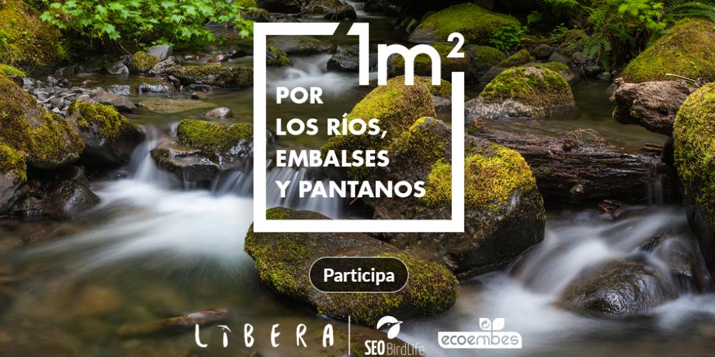 Imagen destacada de '1m² por la naturaleza'. Acción '1m² por los ríos, embalses y pantanos'