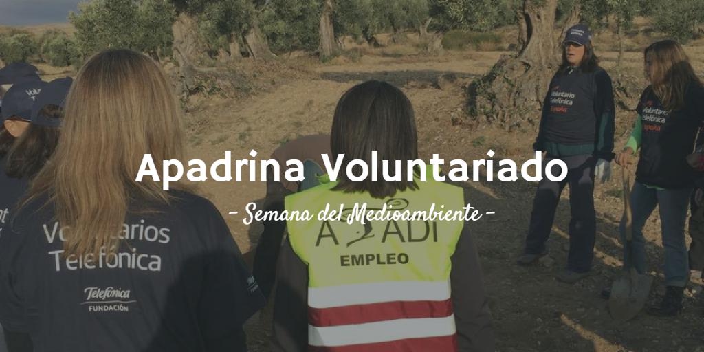 Imagen destacada del artículo de Actividades de voluntariado