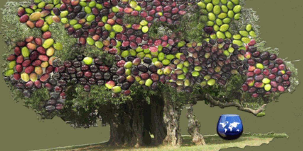 Imagen destacada del artículo: Premio AEMO a la Difusión de la Cultura del Olivo 2018