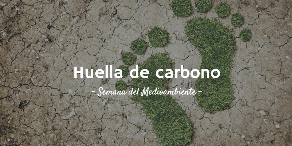 Imagen destacada del artículo 7 trucos para reducir tu huella de carbono