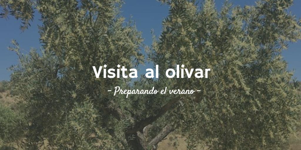 Imagen destacada de la 4ª visita al olivar 2018
