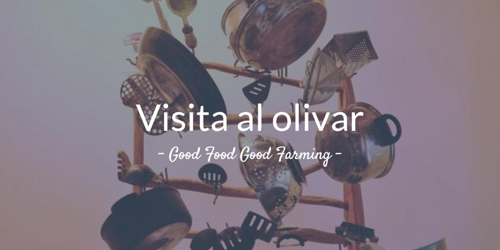 6ª visita al olivar 2018. 'Buena Alimentación Buena Agricultura'