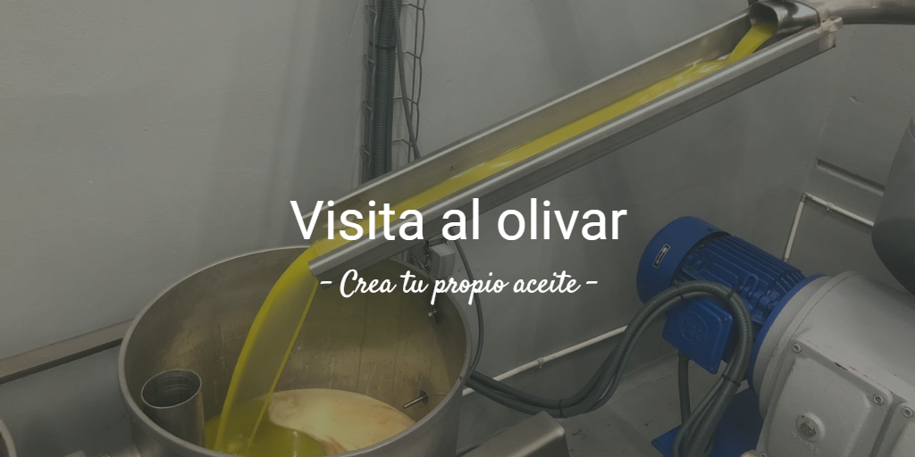 8a Visita al olivar. Crea tu propio aceite