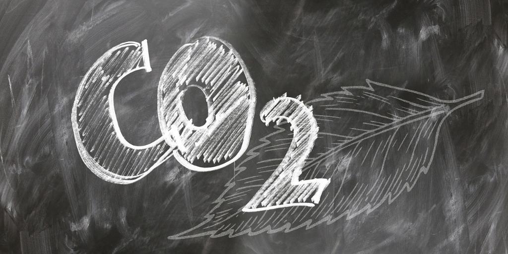 imagen Día Mundial por la Reducción de las Emisiones de C02