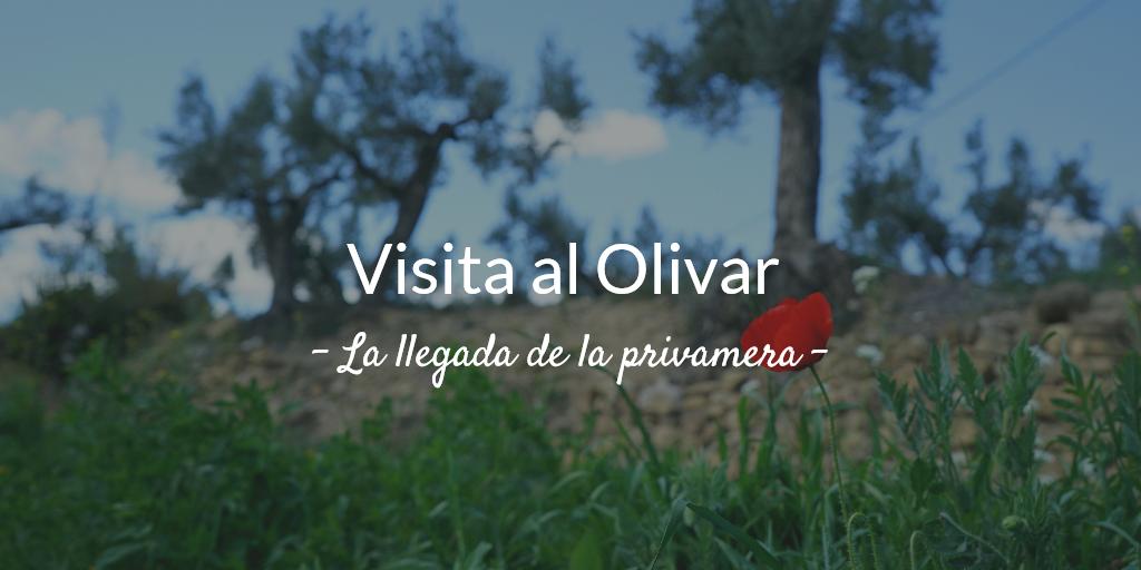 imagen artículo 1ª Visita al olivar 2019. La llegada de la primavera
